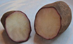 yakon wortel