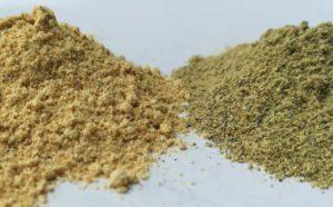 Ayurvedische kruiden: asafoetida en hingastak